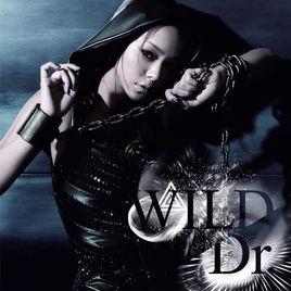 Wild (Namie Amuro song) 2009 single by Namie Amuro