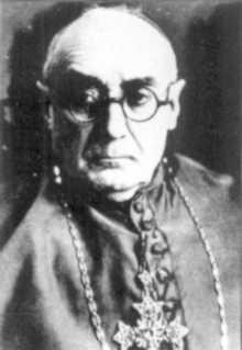 Enrique Pla y Deniel Spanish Cardinal of the Roman Catholic Church