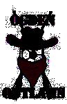 Ogden Outlaws