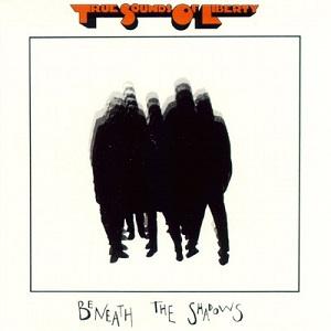 <i>Beneath the Shadows</i> 1982 studio album by T.S.O.L.