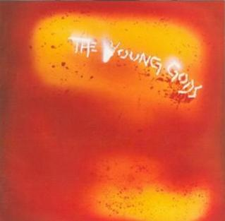 <i>Leau rouge</i> 1989 studio album by The Young Gods