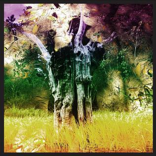 <i>Meeting of the Waters</i> (EP) 2017 EP by Animal Collective