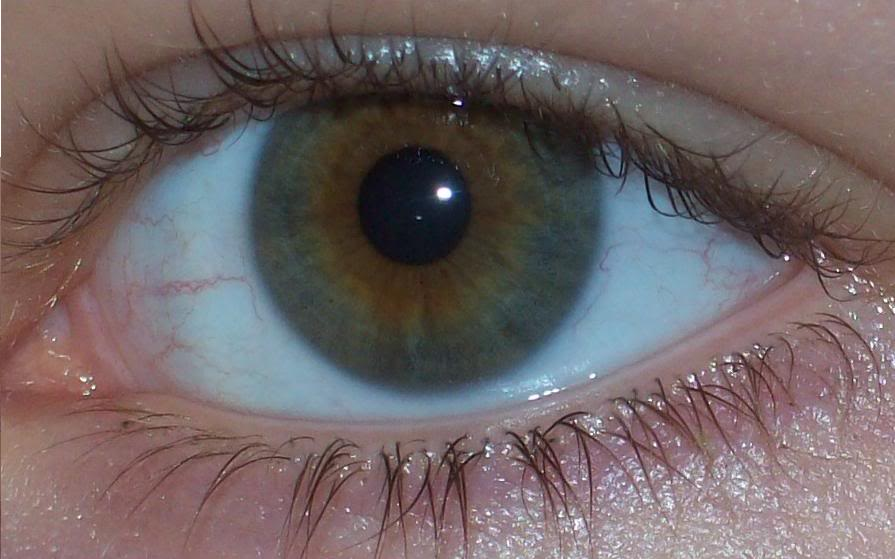 file mixed eye color jpg