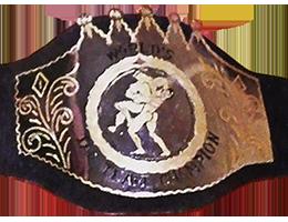 NWA World Tag Team Championship (Los Angeles version) Professional wrestling tag team championship