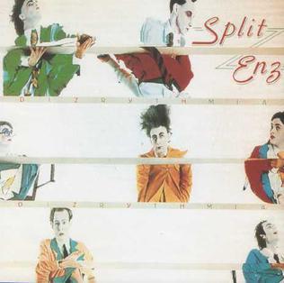 <i>Dizrythmia</i> 1977 studio album by Split Enz