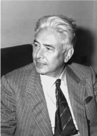 Ennio de Giorgi Italian mathematician