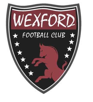 Wexford Youths FC crest