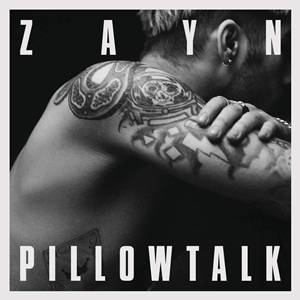 Zayn — Pillowtalk (studio acapella)
