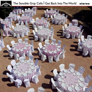 <i>Get Back into the World</i> 2020 studio album by The Sensible Gray Cells