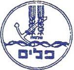 Palyam former miltary organisation
