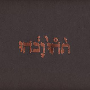 <i>Slow Riot for New Zero Kanada</i> 1999 EP by Godspeed You! Black Emperor