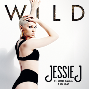 Jessie J featuring Big Sean and Dizzee Rascal — Wild (studio acapella)