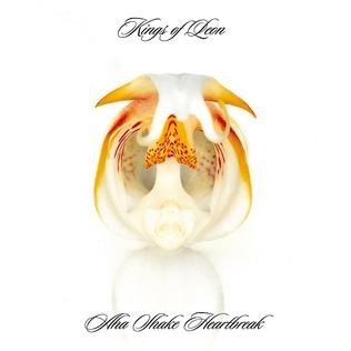 <i>Aha Shake Heartbreak</i> 2004 studio album by Kings of Leon