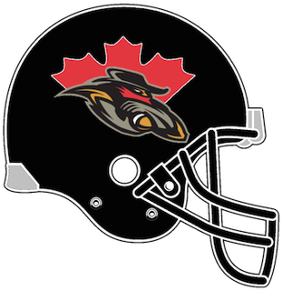 Ottawa Renegades Canadian Football League team based in Ottawa, Ontario