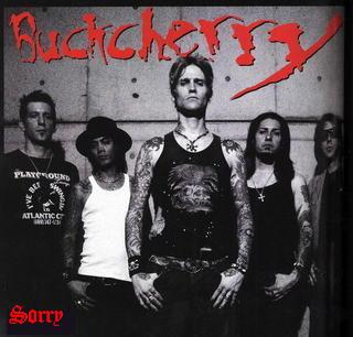 Sorry (Buckcherry song) 2007 single by Buckcherry