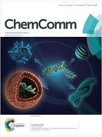 Chemical communications cover.jpg