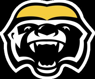 Hamilton Honey Badgers - Wikipedia