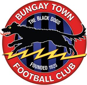 Bungay Town F.C. Association football club in England