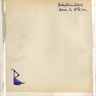 <i>Down in Albion</i> 2005 studio album by Babyshambles