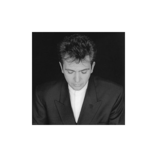 <i>Shaking the Tree: Sixteen Golden Greats</i> 1990 greatest hits album by Peter Gabriel