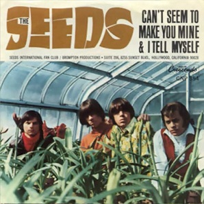 Cant Seem to Make You Mine 1967 single by The Seeds