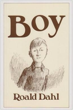 Picture of a book: Boy