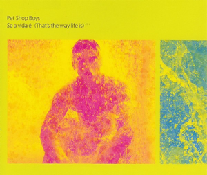 Se a vida é (Thats the Way Life Is) 1996 single by Pet Shop Boys