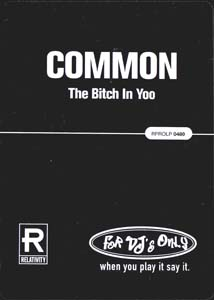 The Bitch in Yoo 1996 single by Common