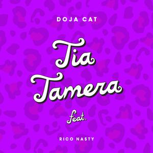 Tia Tamera 2019 single by Doja Cat featuring Rico Nasty