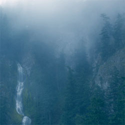 <i>Diadem of 12 Stars</i> 2006 studio album by Wolves in the Throne Room