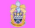 Newbury F.C. Association football club in England