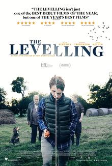 The Levelling.png