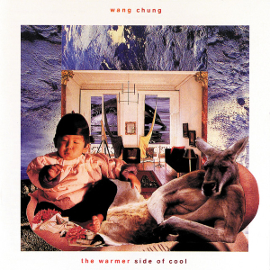 <i>The Warmer Side of Cool</i> 1989 studio album by Wang Chung