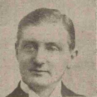 Tudor Rees British politician