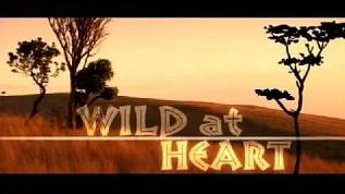 <i>Wild at Heart</i> (UK TV series) British TV series