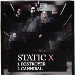 Destroyer (Static-X song) song by Static-X
