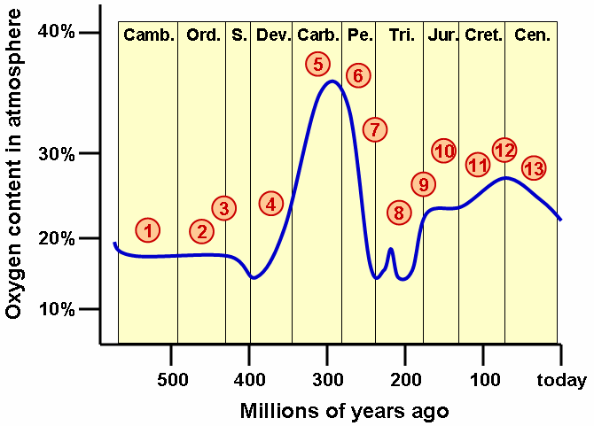the evolution of oxygen on earth The interaction between the oxygen and nitrogen cycles in particular  indeed,  the evolution of life during the first half of earth's history led to a.
