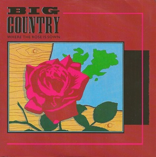 Where the Rose Is Sown 1984 single by Big Country