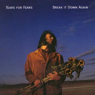 Break It Down Again 1993 single by Tears for Fears