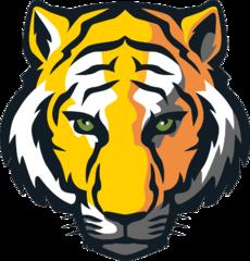 DePauw Tigers Athletic teams that represent DePauw University