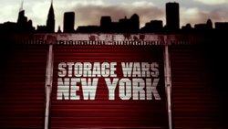 Sperm storage in new york