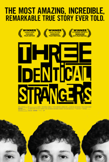 Three Identical Strangers.png