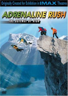 Adrenaline Rush: Everything You Should Know