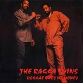 <i>Reggae Owes Me Money</i> 1991 studio album by The Ragga Twins