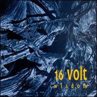 <i>Wisdom</i> (album) 1993 studio album by 16volt