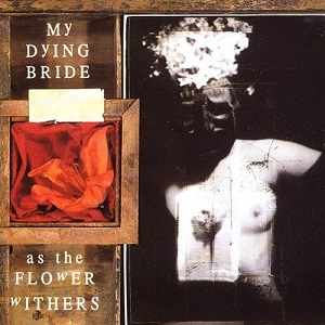 <i>As the Flower Withers</i> 1992 studio album by My Dying Bride
