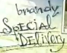 <i>Brandy: Special Delivery</i> television series