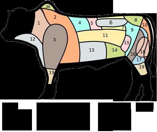 Foodie Feedback View Topic Beef Primal Cuts