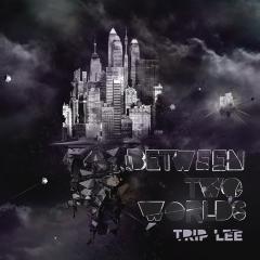 <i>Between Two Worlds</i> (Trip Lee album) 2010 studio album by Trip Lee