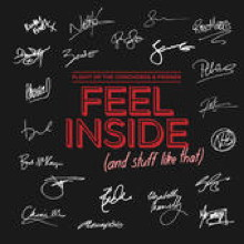Feel Inside (And Stuff Like That) 2012 single by Flight of the Conchords